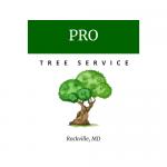 Pro Rockville Tree Service