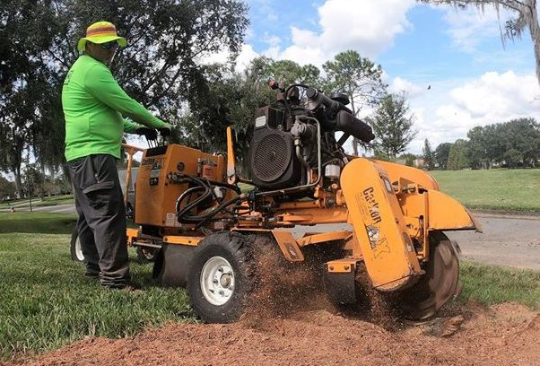 Picture of our stump grinder removing a tree stump in Germatnown, MD